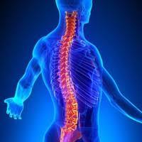 La osteopatía es una ciencia, una filosofía, un arte